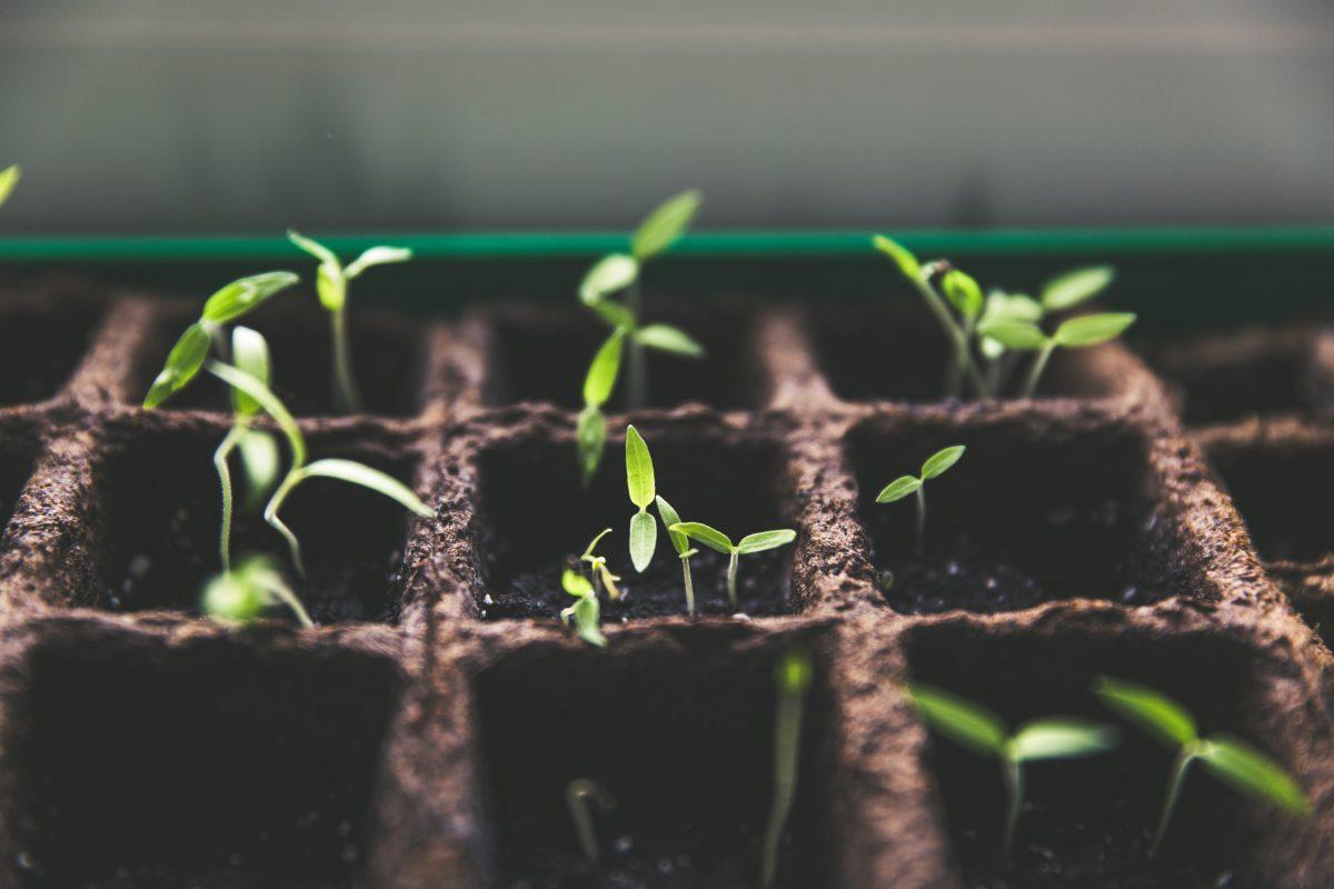 投資の可能性を拓く: 社会的インパクトと利益のトレードオフからどう脱却するか